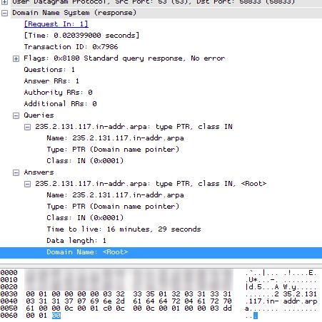 Reverse DNS Zero Answer